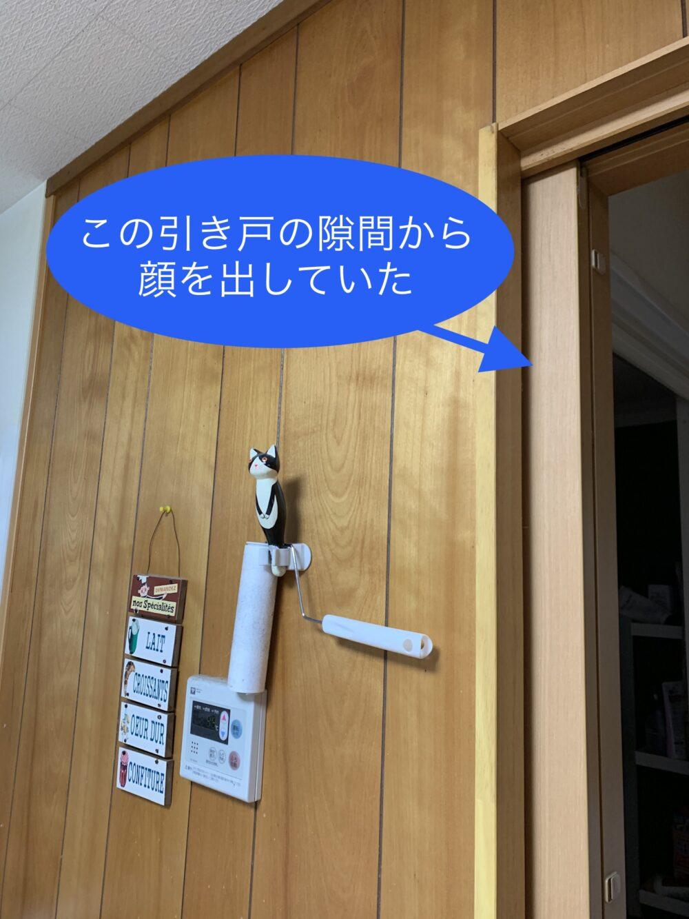 家の部屋の写真
